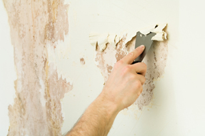Fairfield County Wallpaper Removal